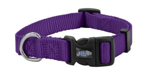 prism snap n go collar small purple