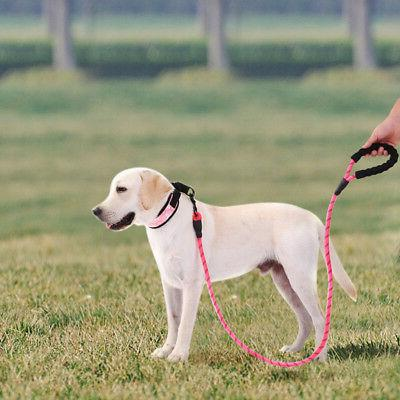 Rope Dog Lead Training Pet Leash ft Long for Small