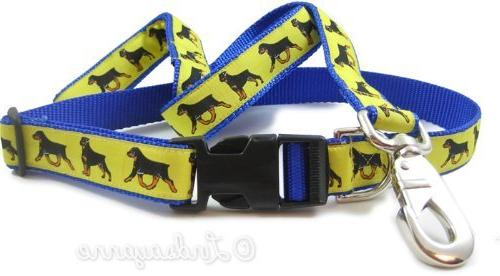 rottweiler breed collar leash set