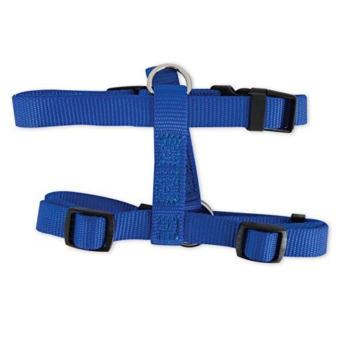 royal blue adjustable dog harness