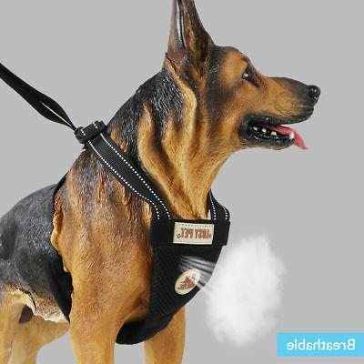 Small Dog and Leash Soft Harness Vest Lead Adjustable XS-L