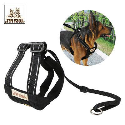 Small Dog Harness and Leash Set Soft Harness Vest Lead For P