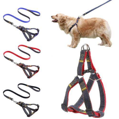 Small Harness And Leash Breathable Mesh Vest Strap XS-XL