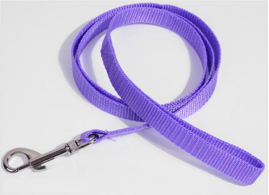 Small Pet Leash Dog OWNER