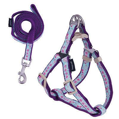 totem dog harness and leash set strong