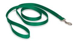 PetSafe Premier Leash, 3/4 by 6-Feet, Green