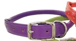 Auburn Leathercrafters Rolled Dog Collar - Purple - 14