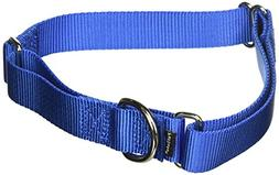 "PetSafe Martingale Collar, 1"" Large, Cadet Blue"