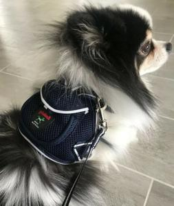 NWT Pet Soft Adjustable Backpack Harness With Leash Set For