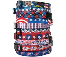 Patriotic USA Dog Collar - with Tag-A-Long ID Tag System - A