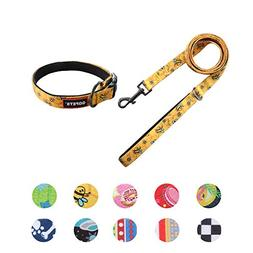 QQPETS Puppy Collar and Leash Set Girl Boy Dog Personalized