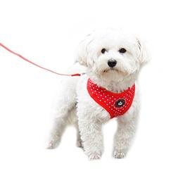 Red Small Soft Mesh Polka Dots Dog Harness with Matching Lea