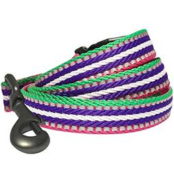 Blueberry Pet 8 Colors 3M Reflective Multi-Colored Stripe Do