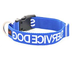 SERVICE DOG Blue Color Coded S-M L-XL Buckle Dog Collar  PRE