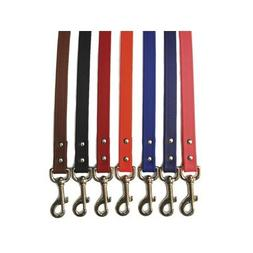 "Sparky's Choice Dog Lead Color: Red, Size: 0.75"" x 72"""
